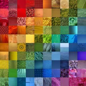 رنگها در رزمی